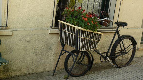 Colonia del sacramento maravillate - Bicicleta macetero ...