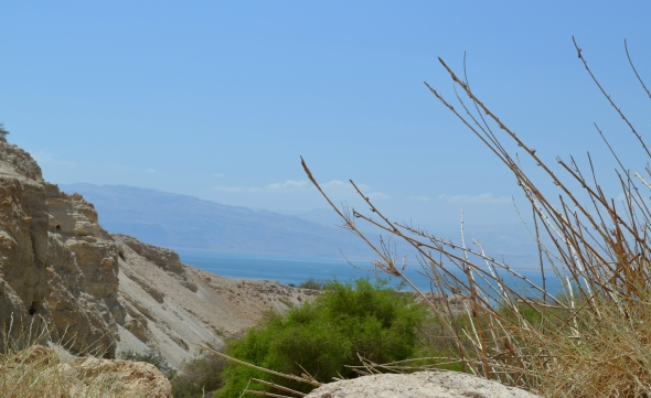 Vista del Mar Muerto desde En Gadi