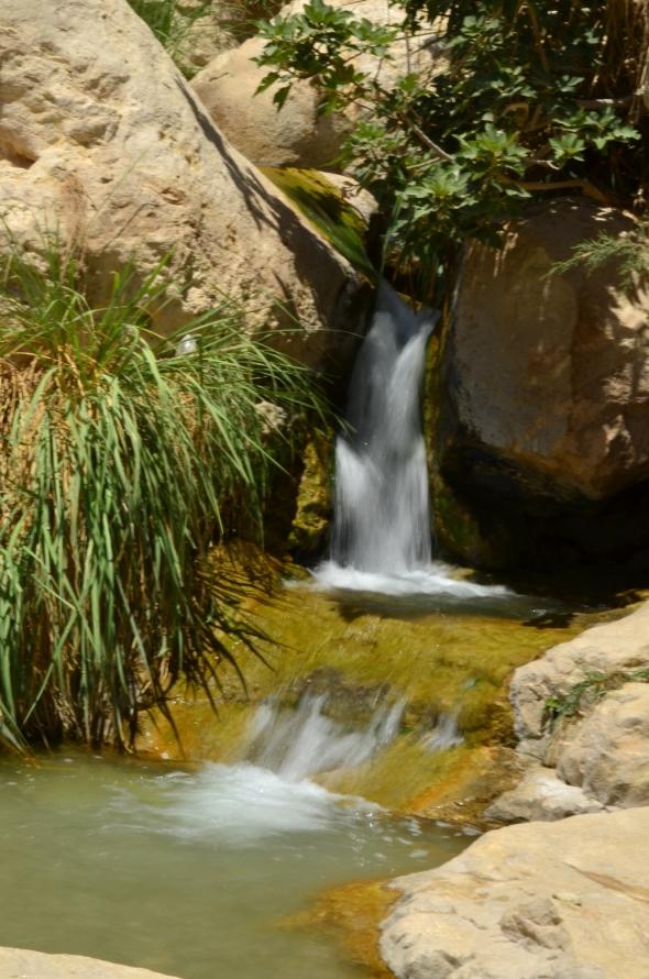 Cascada de En Gadi